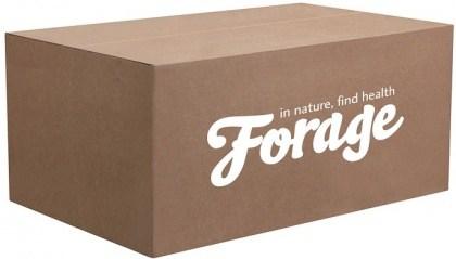 Forage Porridge  5kg Tub