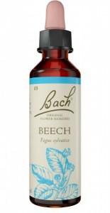 Bach Flower Beech 20ml