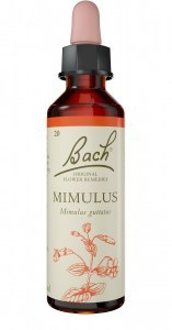 Bach Flower Mimulus 20ml