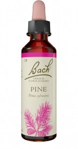 Bach Flower Pine 10ml