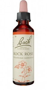 Bach Flower Rock Rose 10ml