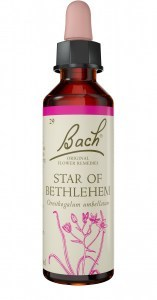 Bach Flower Star of Bethlehem 10ml