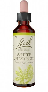 Bach Flower White Chestnut 10ml