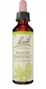 Bach Flower White Chestnut 20ml