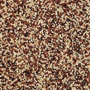 Kadac Bulk Organic Quinoa Grain Tri-Colour 25Kg