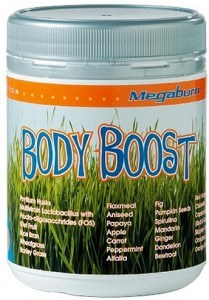 Megaburn Body Boost 240gm