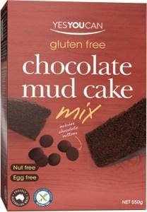 YesYouCan Choc Mud Cake  550g